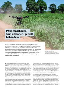 Plant damage - early detection, precise treatment
